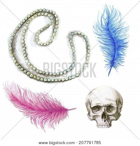Watercolor drawing, feathers, blue feather, pink feather, human skull, for halloween, composite drawing, ostrich feathers on white background, for graphics and decor