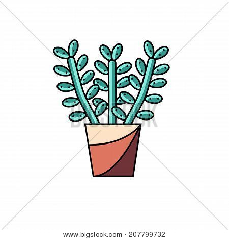 House lucky plant flat line vector icon on isolated white background. Stylized illustration of money tree in pot. Potted succulent image.