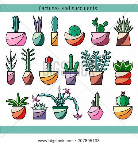 Set of cactuses and succulents in line flat design. Cacti vector icons on isolated white background. Collection of house potted plants in minimalistic style. Illustration of indoor flowers.