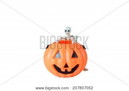 Halloween concept : Plastic human skeleton model leaning against plastic Halloween Pumpkin buckets isolated on white background