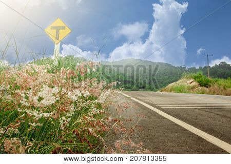 Beautiful road with flower of grass and symbol of tree junction and mountain under blue sky. at Khao Chom Hae  Rayong Thailand