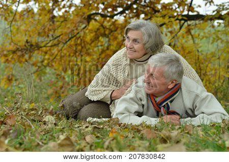 Portrait of happy senior couple in autumn park