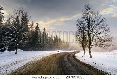 Winding Road Through Forest In Winter
