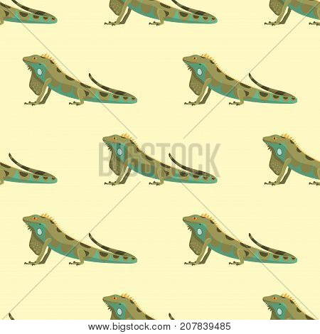 Reptile chameleon amphibian colorful fauna vector illustration reptiloid predator reptiles animals. Exotic cartoon vertebrate tropical iguana africa seamless pattern.
