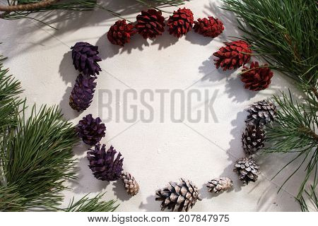Background of winter decoration. Top view colorful strobilas in circle on white backdrop, pine branch around and free space in middle. Christmas, celebration and New Year decor concept