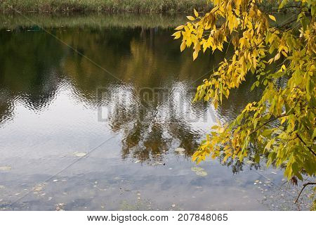Autumn Rechka Psel - will be an excellent gadget screensaver