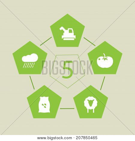 Collection Of Cloud, Sack, Vegetable And Other Elements.  Set Of 5 Agricultural Icons Set.