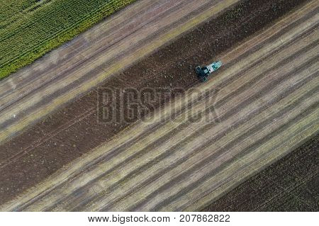 Harvester machine working in field . Combine harvester agriculture machine harvesting golden ripe wheat field. Agriculture. Aerial view. From above. Corn field