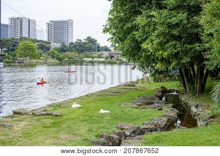 Italy Rome EUR - 08 May 2016 - people rowing in the EUR Lake