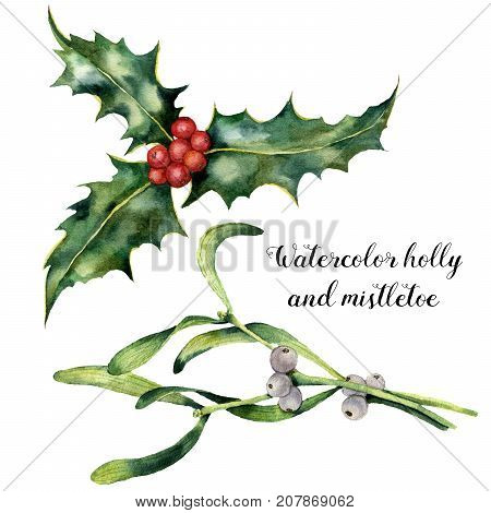 Watercolor holly and mistletoe set. Hand painted holly and mistletoe branch with red and white berry isolated on white background. Christmas botanical clip art for design or print. Holiday plant