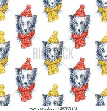 Chinese crested in winter hat and scarf portrait.Seamless pattern.Greeting card of a dog.Domestic pet.Watercolor hand drawn illustration.White background.Symbol of the new year.