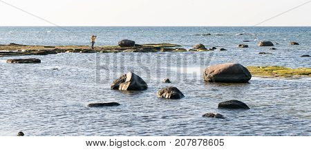 Female photographer taking a photo on the island with two swans. Panoramic image of the sea with rocks on foreground