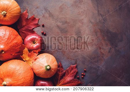 Autumn food background with pumpkins harvest, apples, red berries and maple leaf on old rusty painted background with space for text. Top view. Thanksgiving, Fall, Halloween background