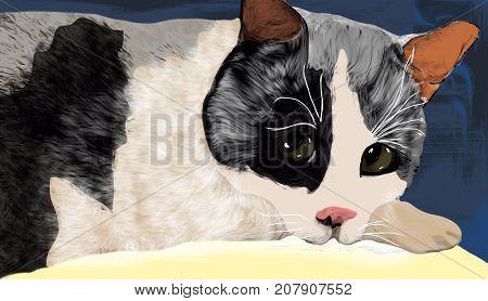 Cute Cat Drawing Artwork Sketch Kitten Feline Pet