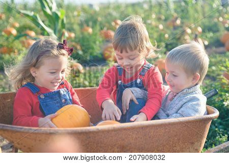 Happy kids in jeans overalls sitting inside old wheelbarrow at farm field pumpkin patch, laughing