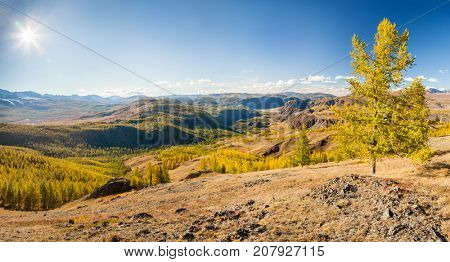 Fall in Mountains. Landscape panorama. Altai. Siberia