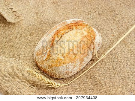 Whole loaf of the wheat sourdough hearth bread with bran and ear of ripe wheat on a sackcloth