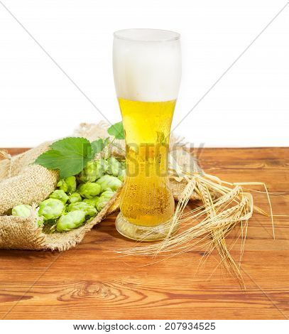 Beer glass with lager beer beside of hop cones with leaves on a sackcloth and ears of barley on an old wooden surface on a white background