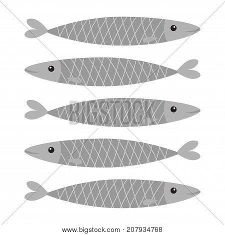 Sardine gray fish icon set. Iwashi. Sardina pilchardus. Cute cartoon character. Anchovy pilchard. Water animal. Marine life. Flat design. White background. Isolated. Vector illustration