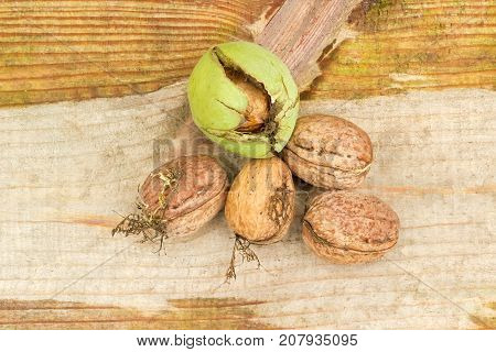 Several freshly harvested shelled walnuts and one walnut in its green husk on an old wooden plank