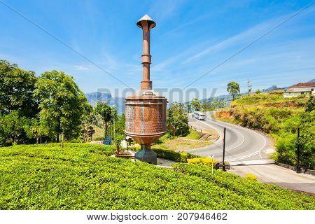 Nuwara Eliya Tea Plantation