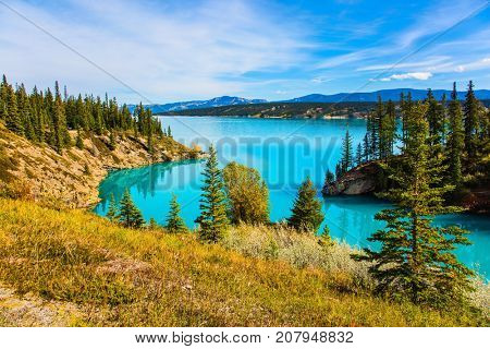 Indian summer in Canada, warm sunny day in autumn. Abraham Lake is the most beautiful lake in the Rockies. The concept of ecological and active tourism