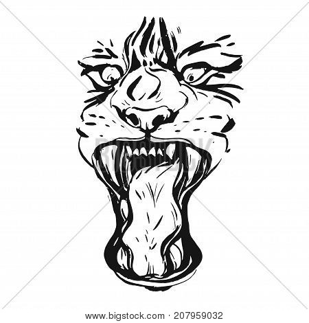 Hand drawn vector realistic ink graphic drawing of anger tiger face isolated on white background.Wild soul concept.Tigers head isolated.Logo, sign