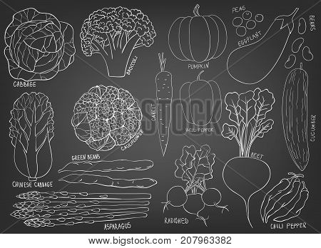 Collection Of Hand Drawn Vegetables