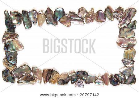 Paua shell border