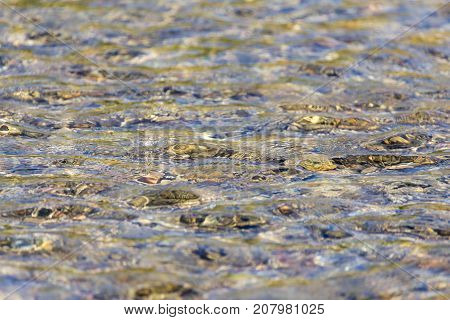 background of whitewater on the river . In the park in nature