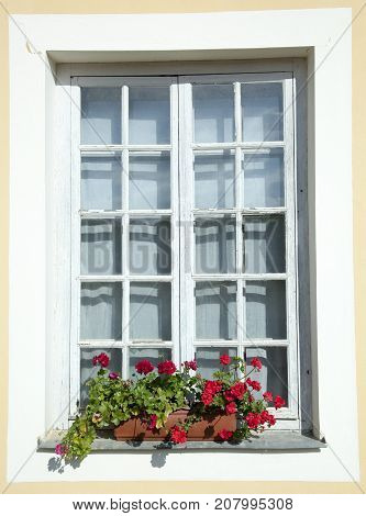 The window with flowers in Rundale village (Latvia).