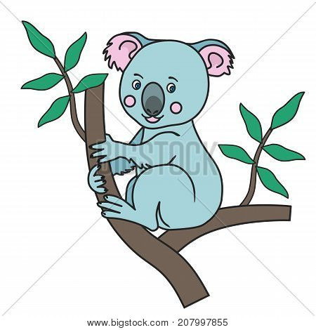 Cute Koala sitting on a eucalyptus tree branches with green leaves.A wild tropical animal.An Australian marsupial bear.Isolated image on a white background.Vector illustration for children.Print