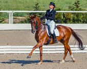 Young elegant rider woman and sorrel horse. Beautiful girl at advanced dressage test on equestrian competition. Professional female horse rider, equine theme. Saddle, bridle, boots and other details. poster