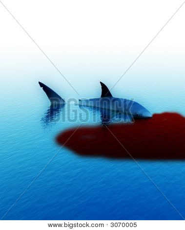 Shark With Blood