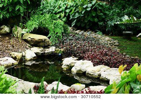 Quiet Garden Pond