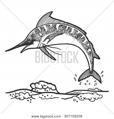 Swordfish Marlin Jumping From Water Sketch Engraving Vector Illustration. Scratch Board Style Imitat