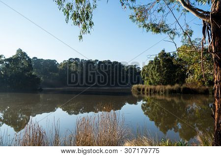 Ruffey Lake At Ruffey Lake Park In Doncaster In The Outer Eastern Suburbs Of Melbourne, Australia