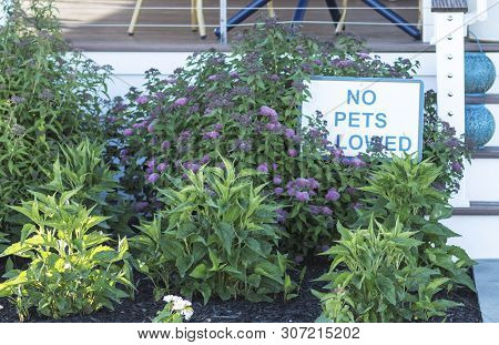 A Garden In Front Of A Restaurants Deck Has A Shite Sign With Blue Letters That Reads No Pets Allowe