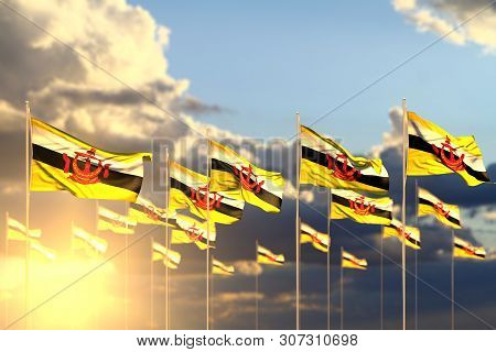 Wonderful Many Brunei Darussalam Flags On Sunset Placed In Row With Selective Focus And Place For Yo
