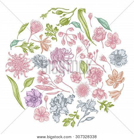 Round Floral Design With Pastel Japanese Chrysanthemum, Blackberry Lily, Eucalyptus Flower, Anemone,