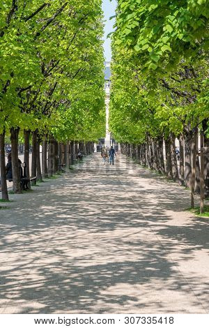 Paris, France - April 12, 2019: Couple Walking On A Path Surrounded By A Tree Row In The Palais Roya