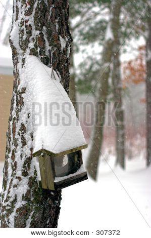 Snow Covered Bird Feeder