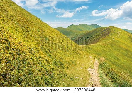 Traverse Path Through Mountain Range. Beautiful Summer Landscape At High Noon. Green Grassy Alpine H