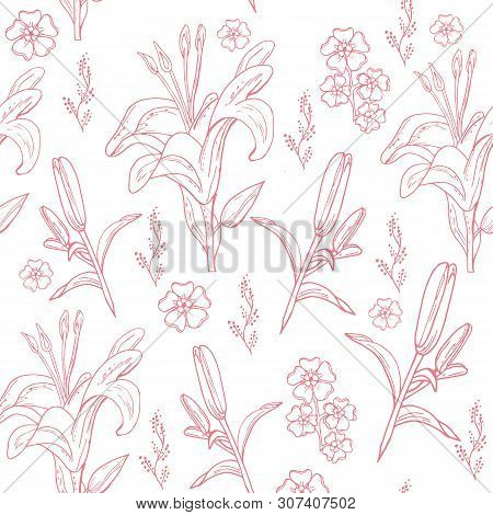 Lily Blooming Flower Seamless Pattern. Hand Drawn Doodle Flowers On White Background.