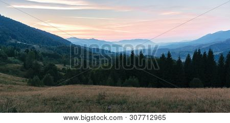 Panorama Of A Countryside In Mountains At Dusk. Forested Hill And Grassy Meadows At Twilight. Haze I
