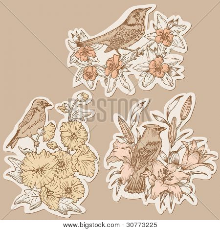 Set of Vintage Birds and Flowers on tags - hand drawn in vector