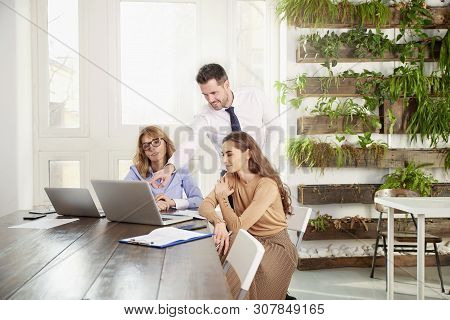 Teamwork In The Office. Group Of Business People Working Together On Laptop In The Office