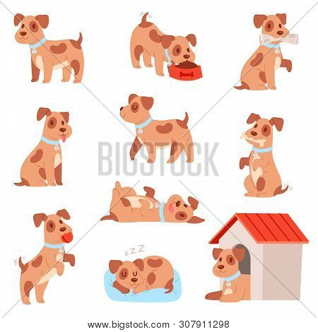 Dog Vector Little Doggie Puppy Animal Character Playing Or Sleeping Illustration Animalistic Doggy S