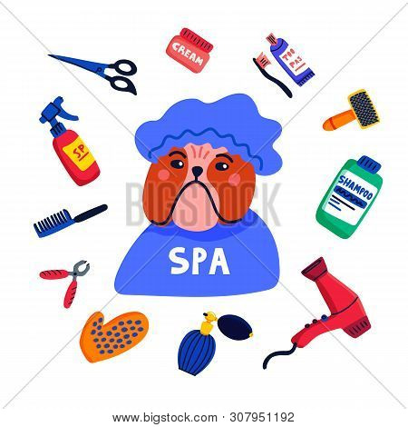 Pet Grooming Concept. Dog Spa. Bulldog Shower Cap With Grooming Elements Comb, Shampoo, Hand Dryer E