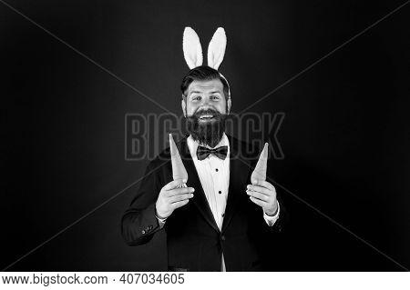 Rabbit Bringing Easter Carrots. Easter Rabbit Black Background. Bearded Man Hold Carrots. Happy Busi